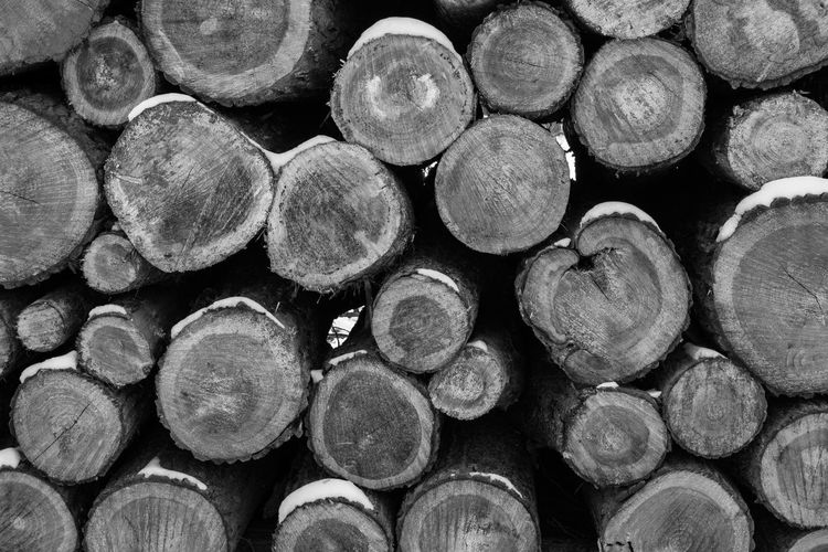 Abundance Arrangement Backgrounds Deforestation Design Firewood Forest Full Frame Heap Large Group Of Objects Log Lumber Industry No People Pattern Shape Stack Timber Tree Wood Wood - Material Woodpile