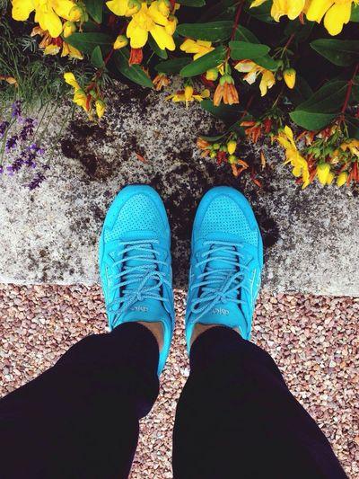 Sneakers Asics Glv Cove