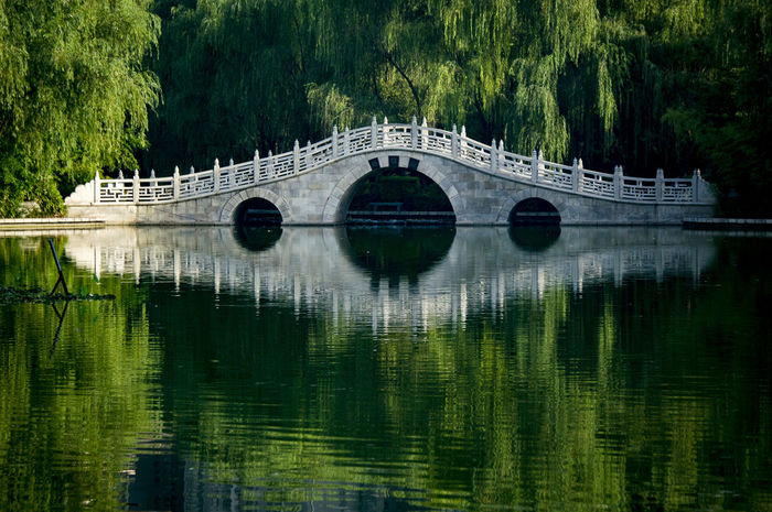 Reflection Water Tree River Bridge - Man Made Structure Architecture Outdoors Built Structure No People Day Nature Sky