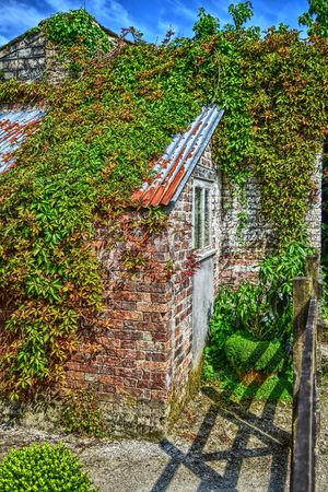 In a cottage garden. Brick Building Brick Wall Cottage Garden  Day Garden Architecture Garden Photography Green Color Growth No People Outdoors Plant Sunny Afternoon Sunny Day Terracotta