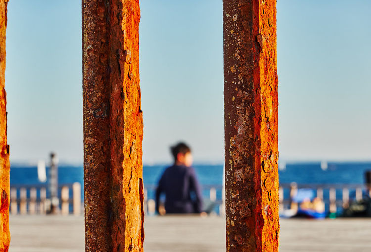 Rear view of man at pier against sea