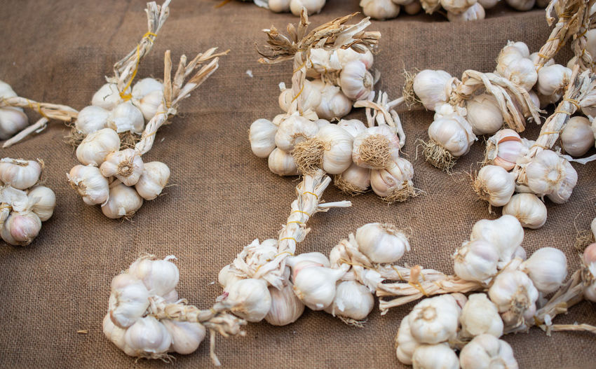High angle view of white garlic