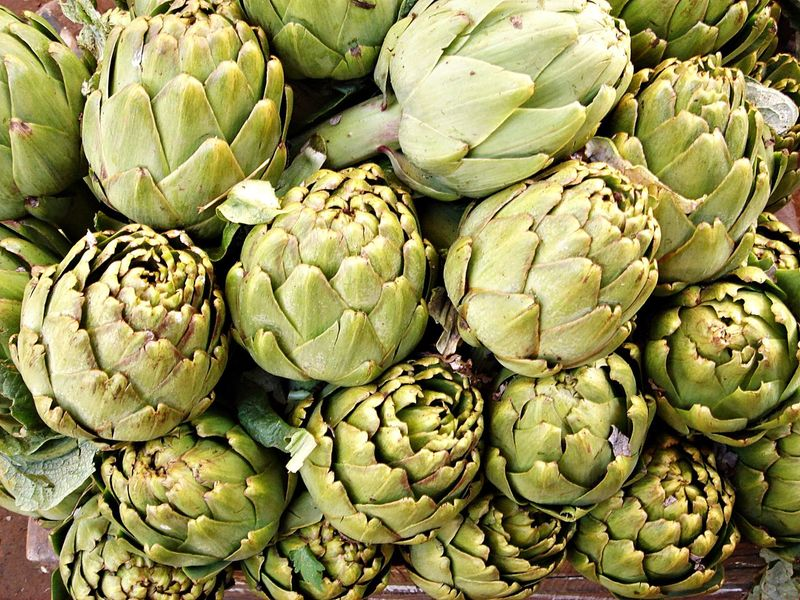 Aliment Alimentation Artichaut Artichoke Close-up Day Food Food And Drink Freshness Fruit Green Color Healthy Eating High Angle View Large Group Of Objects Légumes Légumes Frais Nature No People Outdoors