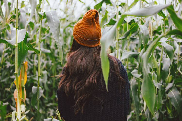 Rear view of woman standing amidst corns on field