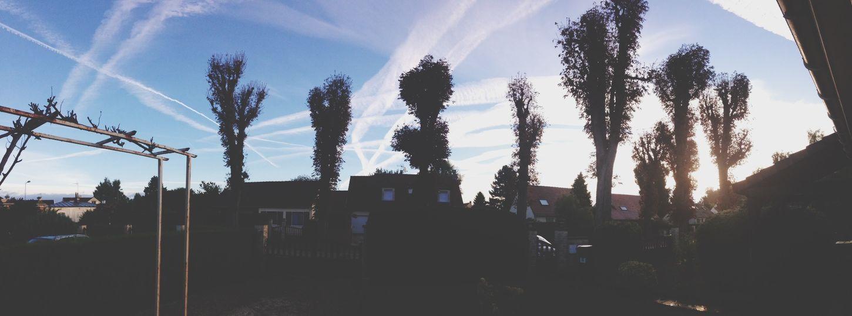 Home Sky