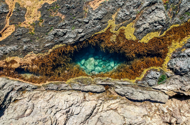Stunning close up aerial drone view of a rock pool at the Mermaid Rock Pools at Matapouri Bay near Whangarei on the North Island of New Zealand. The rock pools are a popular tourist destination. EyeEm Best Shots Matapouri Bay Nature New Zealand Scenery Aerial View Algae Beauty In Nature Dji Drone View Geology Mermaid Pools Nature Nature_collection New Zealand North Island Outdoors Rock - Object Rock Formation Rock Pools Scenics Textured  Tidal Pool Travel Destinations Water Plant Whangarei