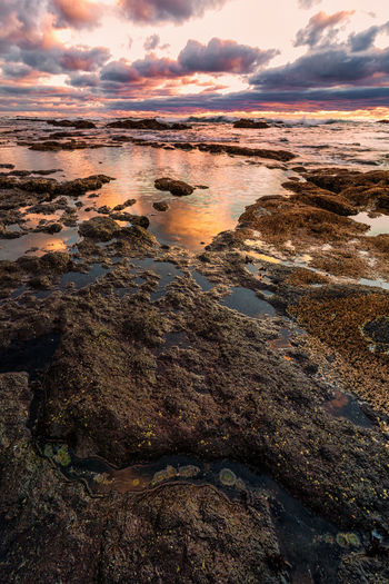 Tide pools at sunset in Oregon. Water Cloud - Sky Sky Beauty In Nature Sunset Rock Tranquility Scenics - Nature Solid Tranquil Scene Rock - Object No People Nature Sea Reflection Beach Idyllic Non-urban Scene Land Outdoors