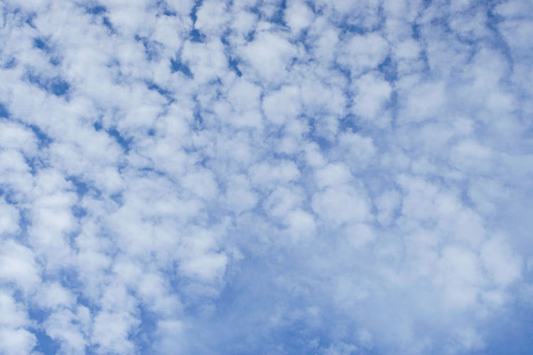 cloud Backgrounds Flying Blue Sky Only Textured  Abstract Summer Pattern Cloudscape Sky Meteorology Cumulonimbus Hurricane - Storm Heaven Wispy Cumulus Cloud Thunderstorm Stratosphere Torrential Rain Fluffy Cirrus Cyclone Forked Lightning Tornado Climate Dramatic Sky Cumulus Plane