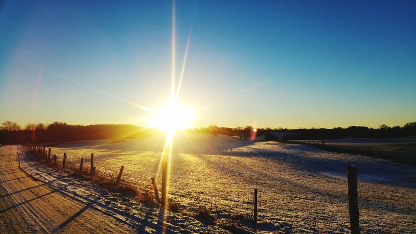 Sunset Sun Sunlight Clear Sky Cold Temperature Beauty In Nature Nature Sky Outdoors Winter Snow Tree Scenics Tranquility No People Day