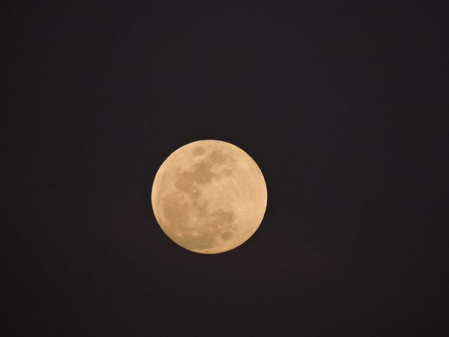 Closeup of the moon Moon Full Moon Astronomy Sky Tranquility Nature Night Beauty In Nature No People Scenics Outdoors
