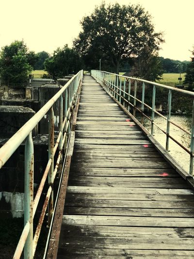 Alone Time Alone Lonly Lonlyness Bridge Fishing Fishing Lifestyle Tree Railing Plant The Way Forward Direction Nature Connection Outdoors Built Structure Footbridge No People EyeEmNewHere EyeEmNewHere EyeEmNewHere My Best Photo Streetwise Photography Stay Out