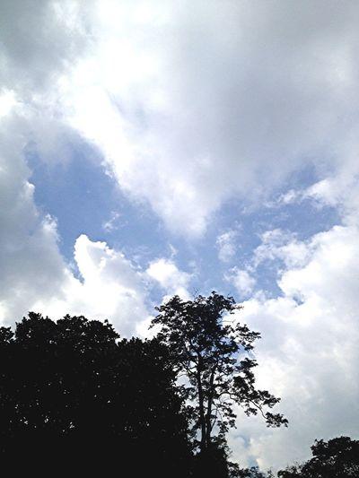 """Heart on sky"""""""""""