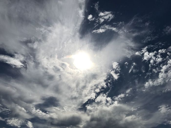 Sun through