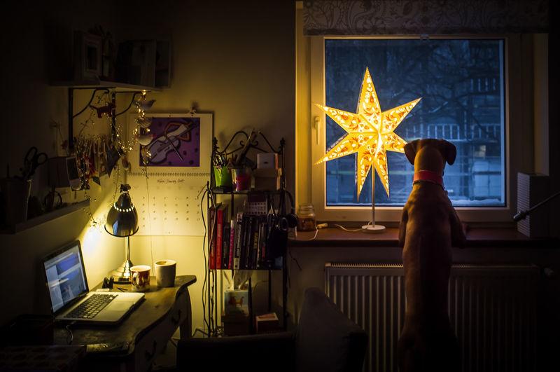 Illuminated light bulb on wall at night