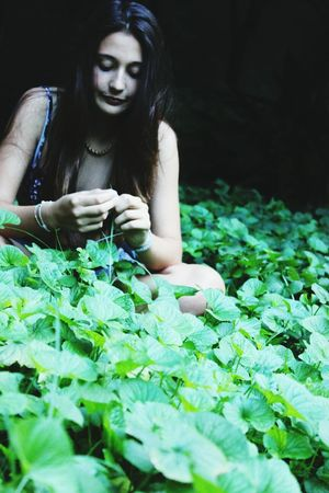 Garden Love Me Shot Green Grass