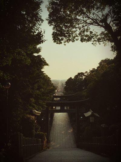 宮地嶽神社 miyajidake jinja shrine