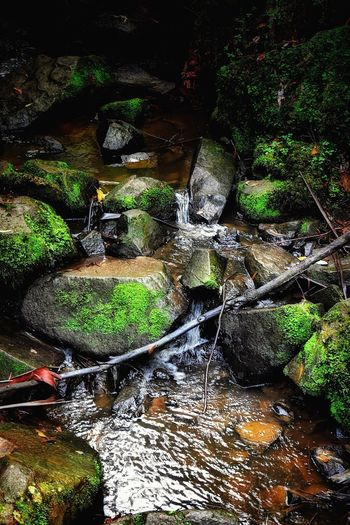 Water Waterfall River Flowing Water Motion Rock - Object Outdoors Nature Long Exposure Moss Tranquility Stream - Flowing Water Beauty In Nature No People Rapid Tranquil Scene Forest High Angle View Day Travel Destinations