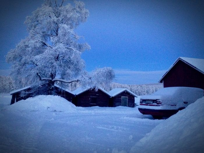 Hello Winter Blue Hour Swedish Lapland
