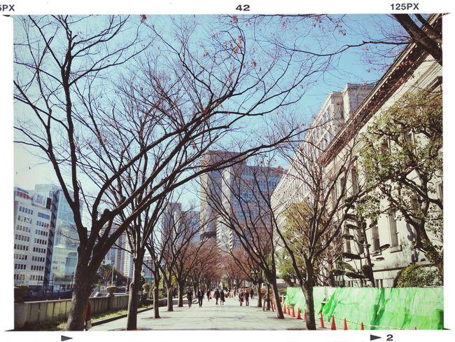 空気は冷たいのですが、陽射しがポカポカ。 Streetphotography