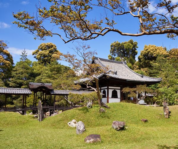 Kodai-ji, Kyoto (May 2017) Religious Architecture Japanese Garden Kodaiji Tranquility Traditional Place Of Worship Japan Kyoto Temple Grass Temple - Building Buddhism Buddhist Temple Architecture Historic Historical Building Japanese Culture Japanese Style No People Landscape Tranquil Scene Beauty In Nature Scenics Traditional Building Trees