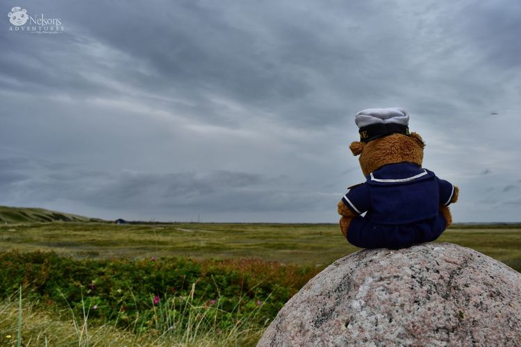 Nelson watches the beautiful dunescape of Denmark Denmark Denmark 🇩🇰 Thorsminde NelsonsAdventures Teddy Teddy Bear Stuffed Toy EyeEm Masterclass EyeEm Nature Lover Landscape_Collection Nature_collection Cloud - Sky Rear View Grass Nature Landscape Tranquility Rural Scene Storm Cloud Beauty In Nature Vacations