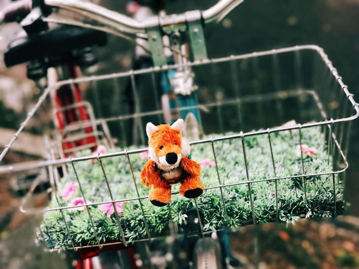 Toy animal on bicycle basket with flowers