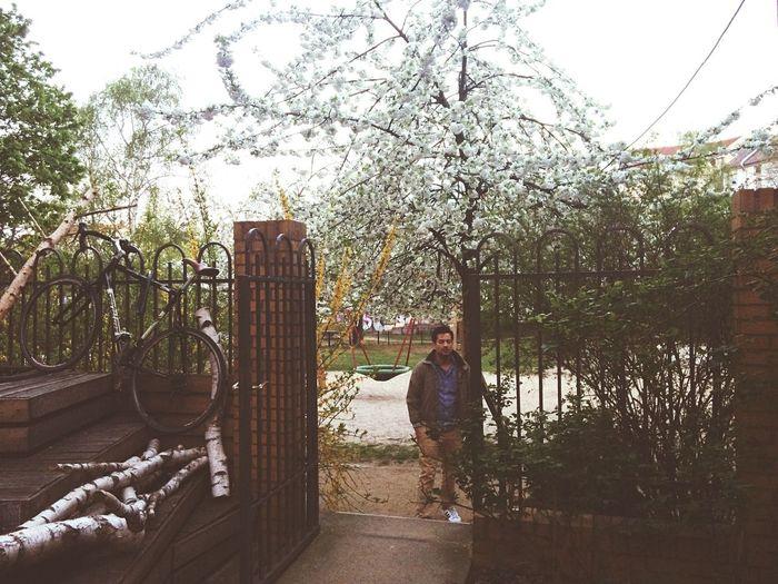 Morning Glory Golden Hour Remise Urban Playground OpenEdit