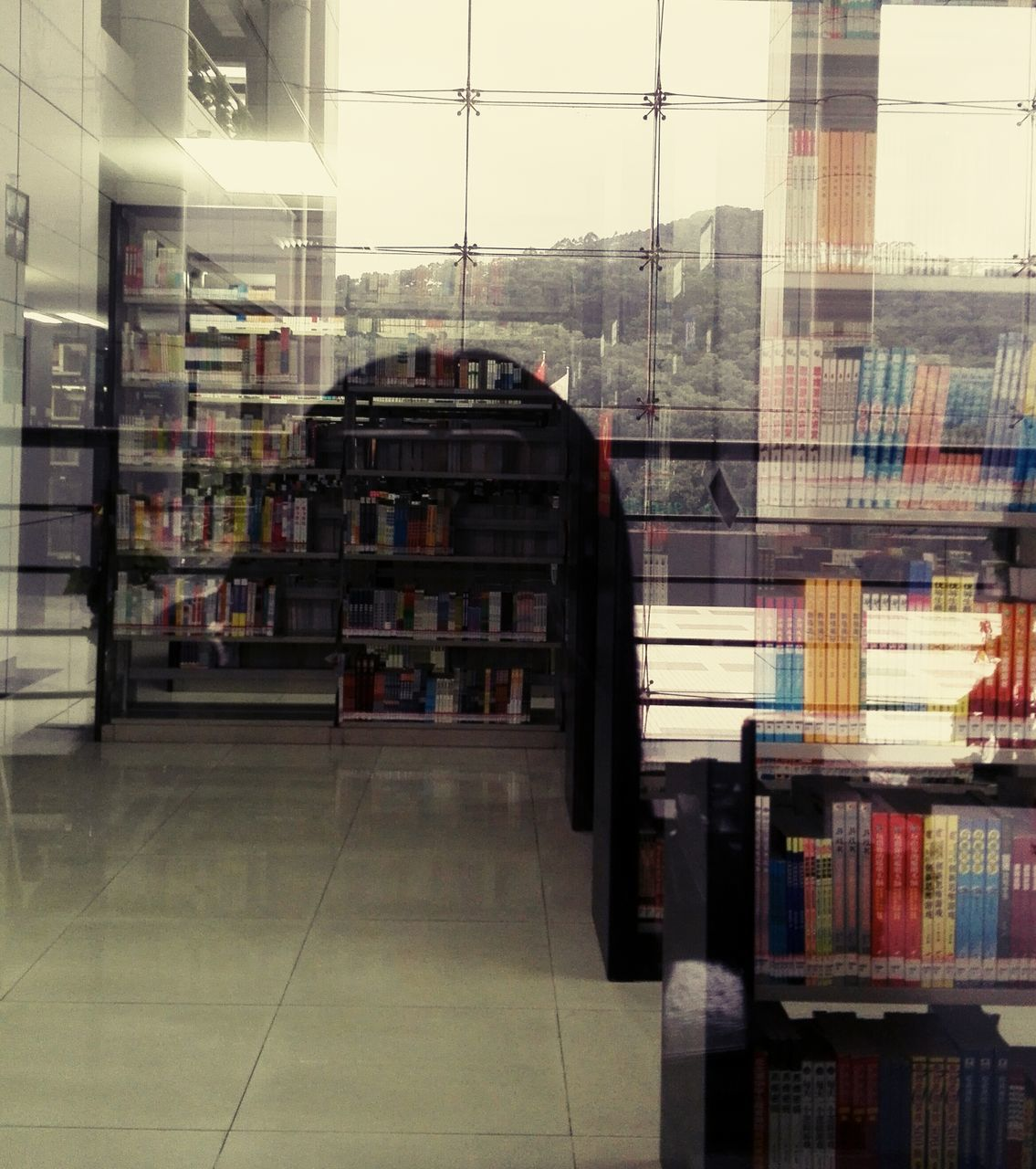 bookshelf, indoors, library, shelf, retail, store, architecture, choice, bookstore, book, reflection, built structure, no people, building exterior, day