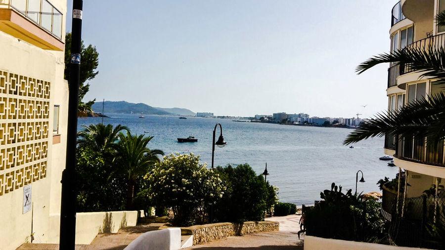 Palmen Ibiza Summerday Sunshine Insel Meer Blue Ocean Blue Sky Ibiza Stadt Balearen Schiff Isla De Ibiza Bucht
