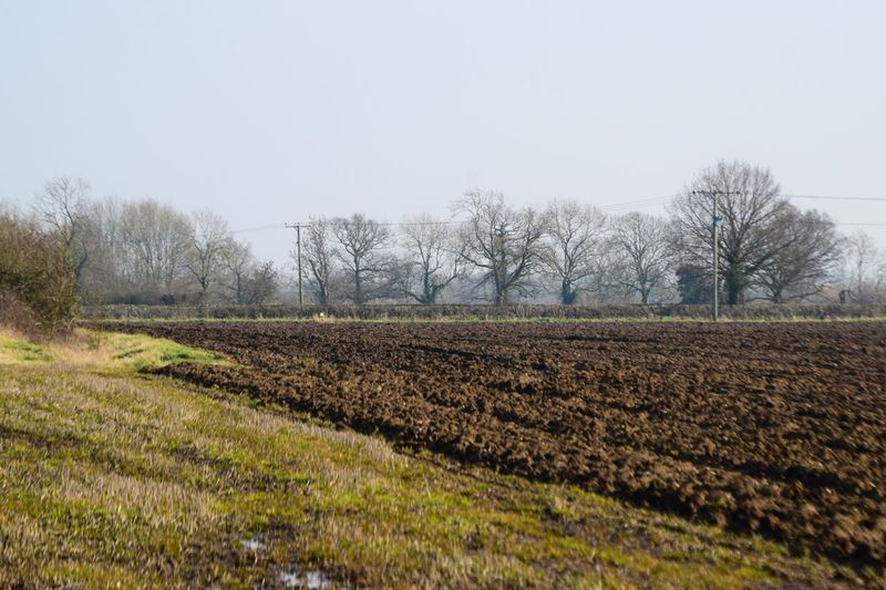 Taking Photos Relaxing Furrows Shadows Field Hedges Trees Contrast Nikond3300