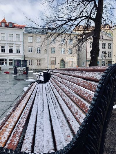 Snow Bench Estonia Tallinn Tallinn Old Town Architecture Tallinn Estonia Baltic Countries Building Exterior Architecture Built Structure Nature Transportation Day Snow Mode Of Transportation Residential District Cold Temperature Outdoors Building City Tree Winter Sky