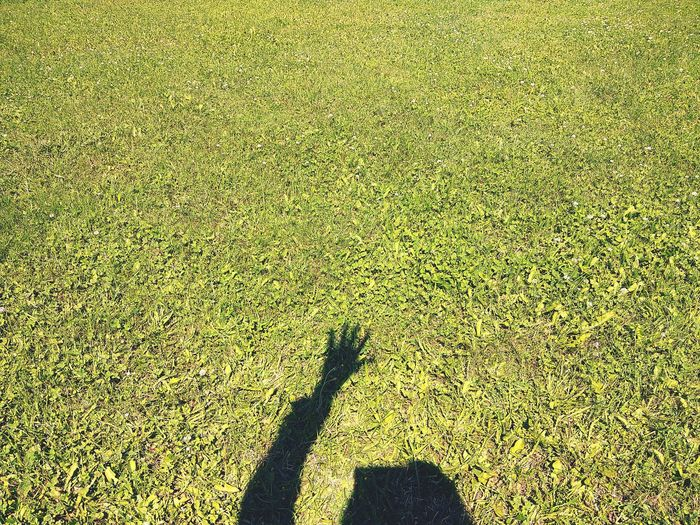 Shadow Sunlight Focus On Shadow High Angle View Full Frame Day Grass Real People Low Section Backgrounds One Person Nature Girl Outdoors Grass Grass Photography Silhouette Hand Summer Shadows & Lights EyeEm LOST IN London Rethink Things Inner Power