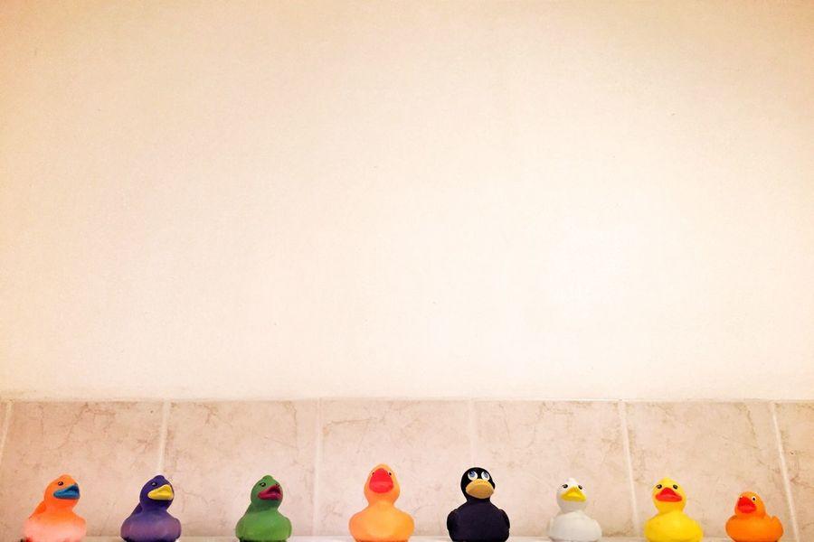 qua qua qua qua qua qua qua qua Duck Ducks Duck Bathroom Bath Time Plastic Duck Bath Minimalism Minimal Minimalobsession