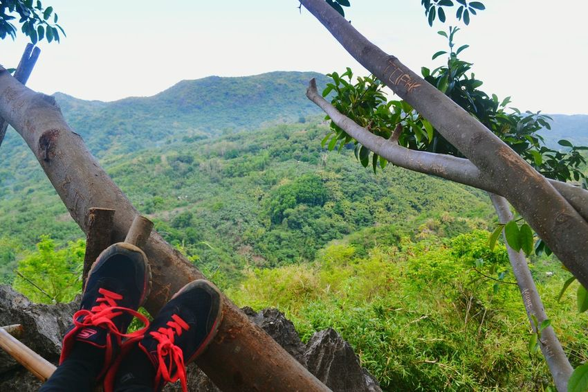 Out Of The Box Shoes Resting My Feet  Beauty In Nature Mountain Tree Nature Breathtaking View
