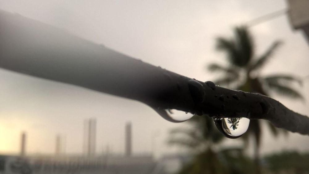 After Raining At Rain Bestoftheday Chill Climate Chill Mode Detail Drop Featured Photo Focus Through Rain Drop Foggy Weather Nature No People Rain Drop Focus Raindropshot Rainy Day Selective Focus Water Water Focus Water Fog Weather Wintertime Wonderful Day
