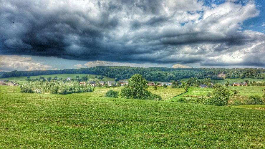 Sky Nature Feld