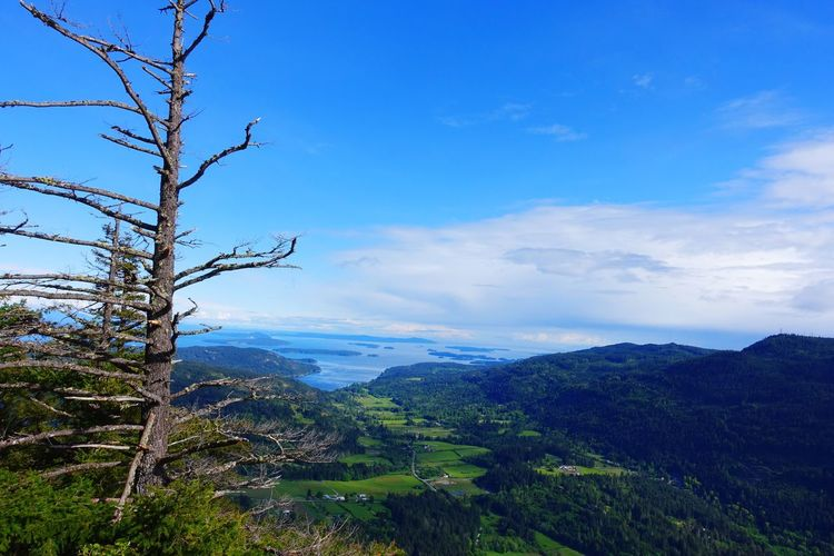 Mount Maxwell Salt Spring Island Canada New Lifestyle  Travel Exploring Abventure Spring Sunny Day Landscape Town Sea Tree Sky