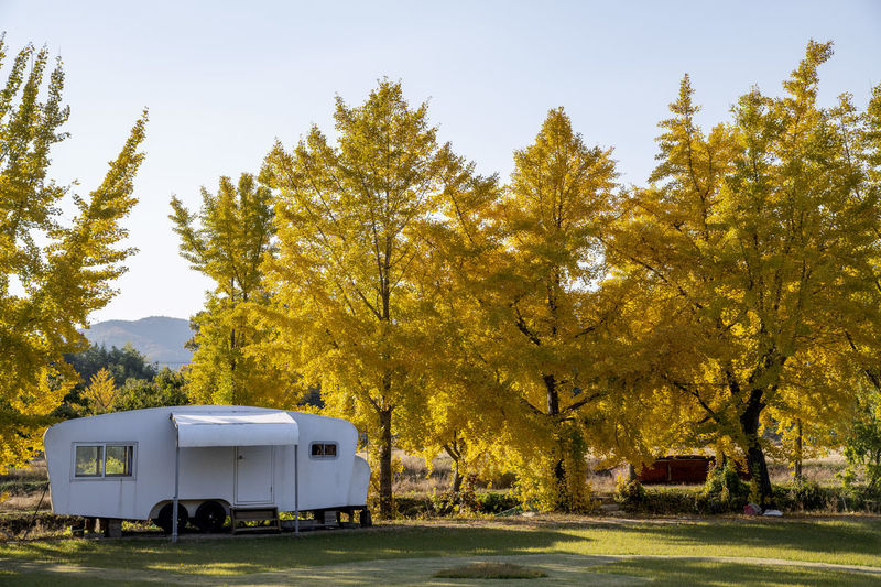 Camping car by yellow ginkgo trees on field against sky