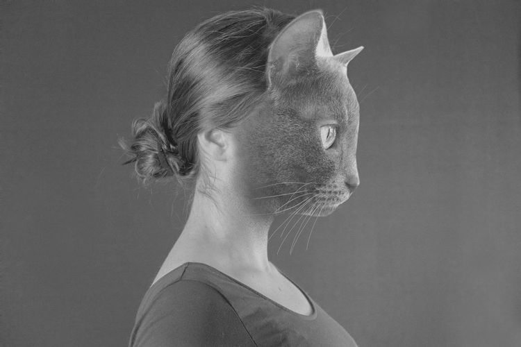 Digital composite image of cat and woman against gray background