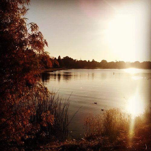 Lake Underhill Sun Fall winter florida weather