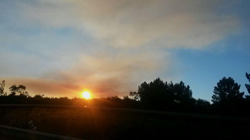 Portugal Incendie Couché De Soleil Nature