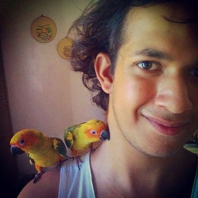 Selfiewithpets Selfie SunConures Cute pets parrots feathers morning snuggles petlover instapets
