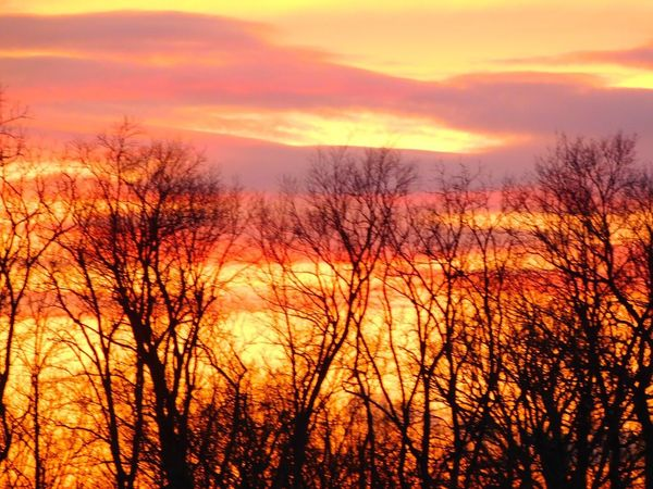Photographybybrookechanelle God's Beauty Sunset Nature Nature Photography Hometown Scenery Indiana Indiana Proud Hometown Love Hometown Glory Hometown Pride Trees Trees And Sky Treescape