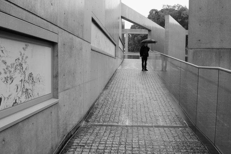 Built Structure Concretedesign Fine Art Museum Japanese Culture Minimalist Building Minimalist Design Modern Japanese Architecture Tadao Ando