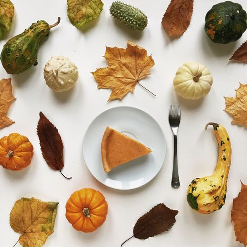 top view of a pumpkin pie in a dressing of decorative pumpkins by Thanksgiving Day Food Still Life Food And Drink Table Freshness High Angle View Indoors  No People Healthy Eating Eating Utensil Directly Above Wellbeing Spice Variation Ready-to-eat Kitchen Utensil Choice Ingredient Spoon Plate