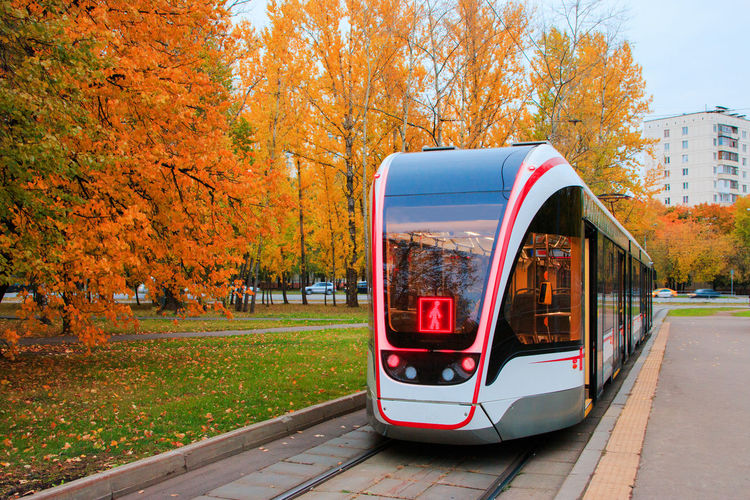 Tramway Against Trees In City During Autumn