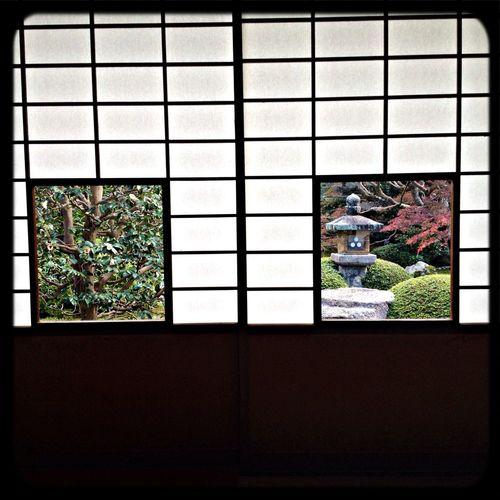 雲龍院 れんげの間「しきしの景色」こちらは椿・灯籠です。 Taking Photos The Purist (no Edit, No Filter) Temple View