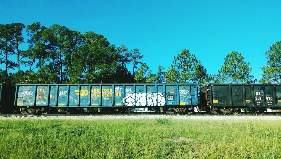Train Tracks Train Graffiti  Train Yard Graffiti Bunnell, Fl