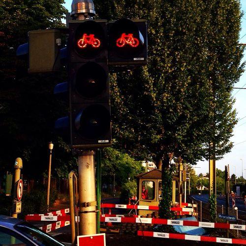 Rotlicht Ampeln 74-ant-ma Muttenz
