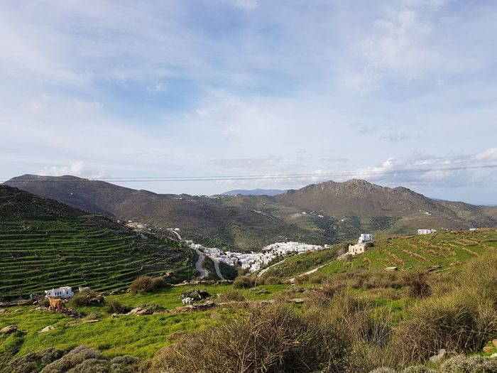 High View of Cliffs Mountains and Village Village Road Greek Islands Animals In The Wild Animal Goat Lamb Stone Wall Water Irrigation Equipment Agriculture Sky Landscape Cloud - Sky Terraced Field Growing Mountain Range Tranquility